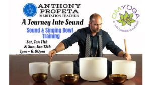 Journey Into Sound: Singing Bowl Training @ OM Yoga & Wellness Studios | West Palm Beach | FL | United States