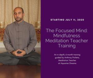 The Focused Mind: Mindfulness Meditation Teacher Training @ Aquarian Dreams | Indialantic | FL | United States