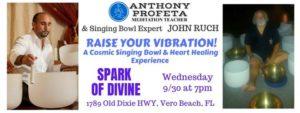 RAISE Your Vibrations: Singing Bowl & Reiki Heart Healing Experience @ Spark of Divine, LLC   Vero Beach   FL   United States