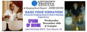 RAISE Your Vibrations: Singing Bowl & Reiki Heart Healing Experience @ Spark of Divine, LLC | Vero Beach | FL | United States
